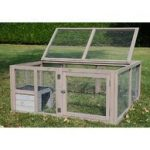 Test cage tortue