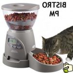 Comparatif distributeur croquettes automatique chat