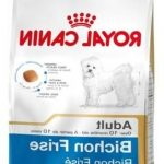 Guide d'achat royal canin babycat