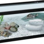 Guide d'achat tortue aquarium
