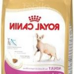 Comparatif sphynx royal canin