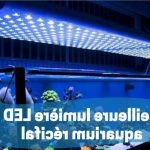 Comparatif eclairage led aquarium