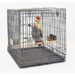 Comparatif cage transport perroquet