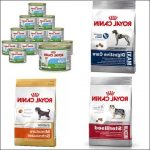 Guide d'achat royal canin cambrai