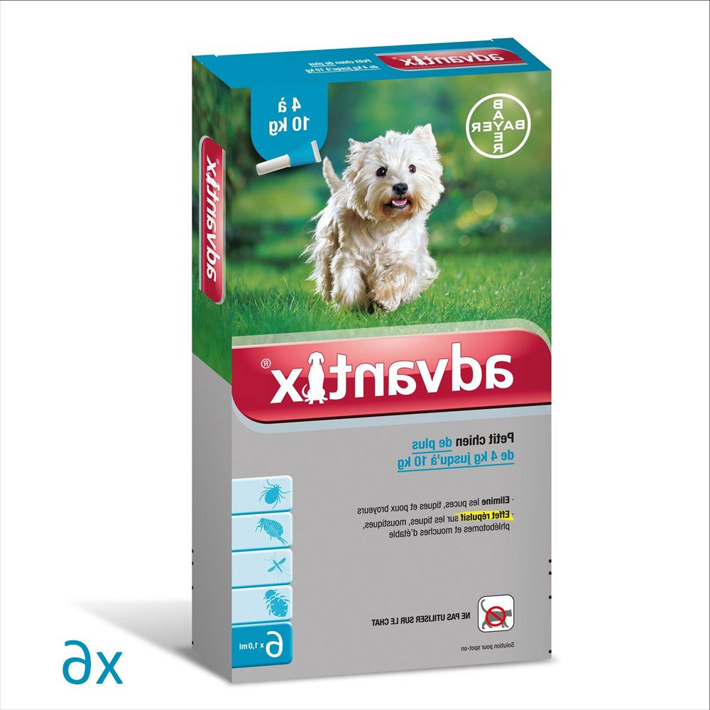 Guide D'achat Pipette Chien
