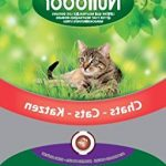 Guide d'achat caisse a chat