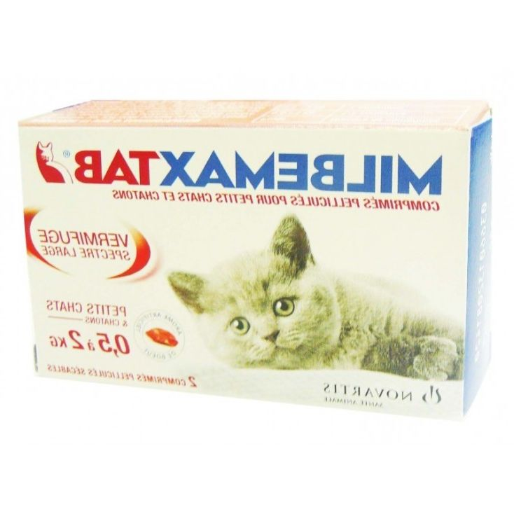 Guide D'achat Vermifuge Chaton