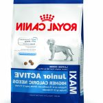 Comparatif croquette maxi junior royal canin