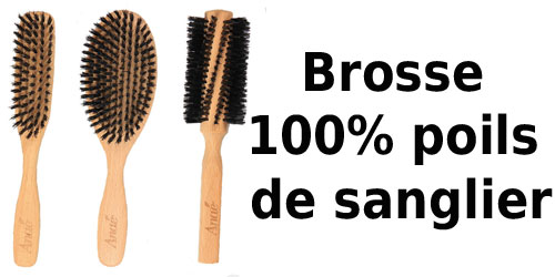 guide dachat brosse a poils